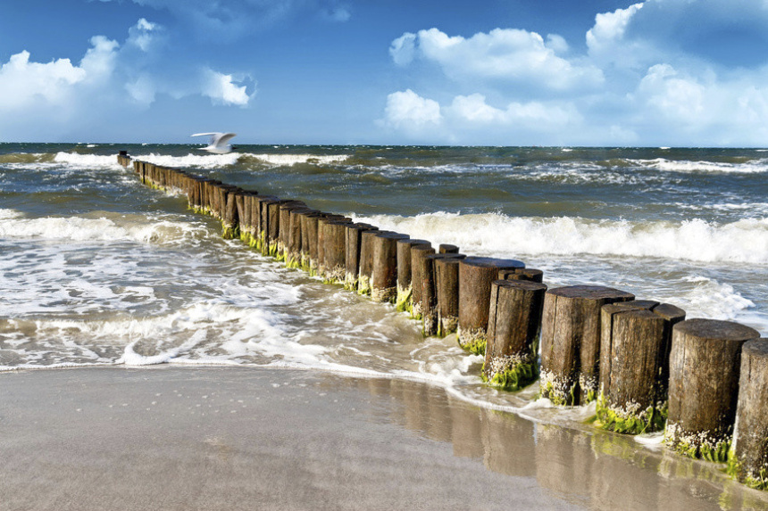 A view from the beach to the sea. Wooden piles serve as breakwaters